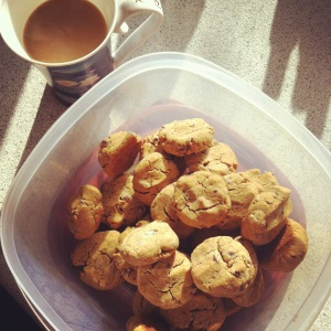 amazing (almost paleo) chocolate chip cookies